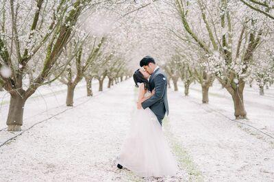 Steven Nguyen Photography