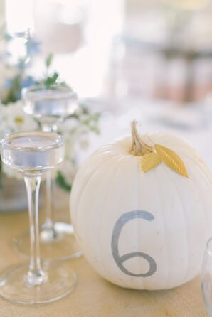 Painted Pumpkin Table Numbers