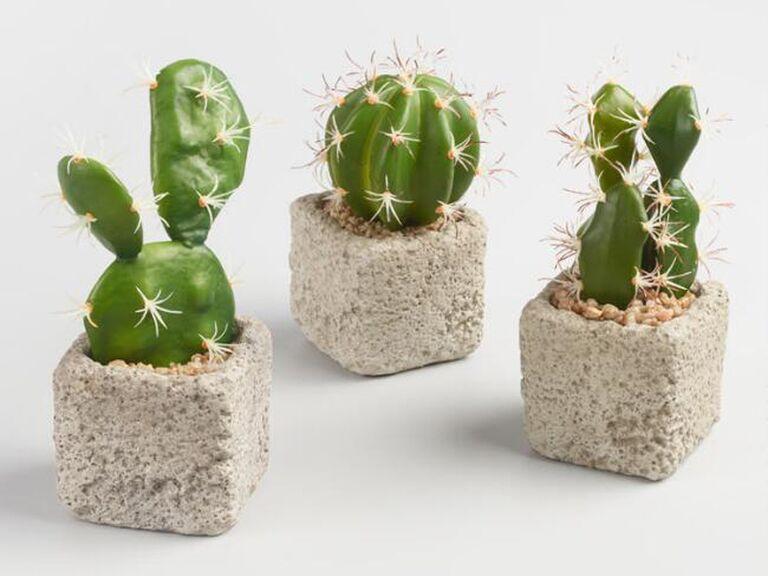 faux cacti in cement pots