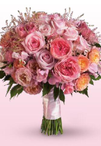 Flower Power Gregory Royer President Of S
