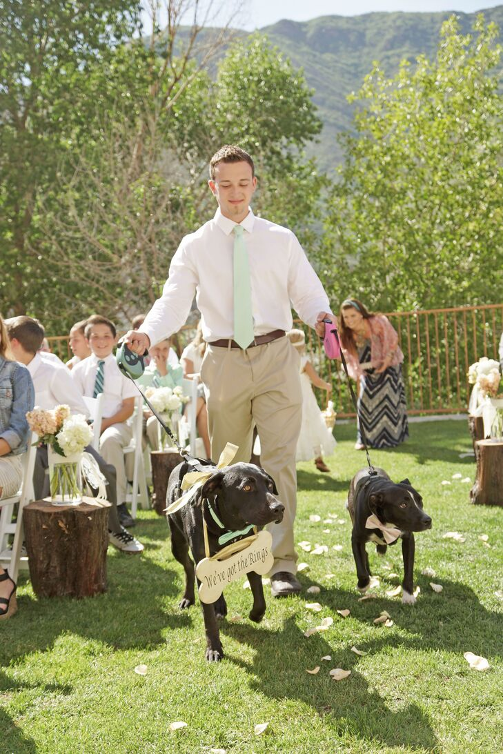 "Ashlee and Dallan didn't have a wedding party, but they did include their dogs as ring bearers. They got them bow ties to match their blush and mint color theme, and one carried a sign that read, ""We've got the rings!"""