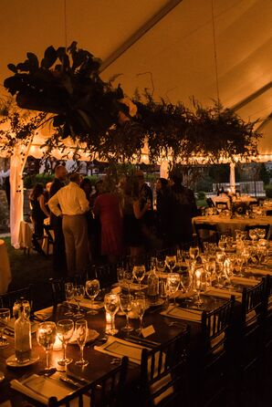 Ambiant Lighting at Tent Reception