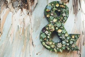 Succulent and Grass Covered Sign