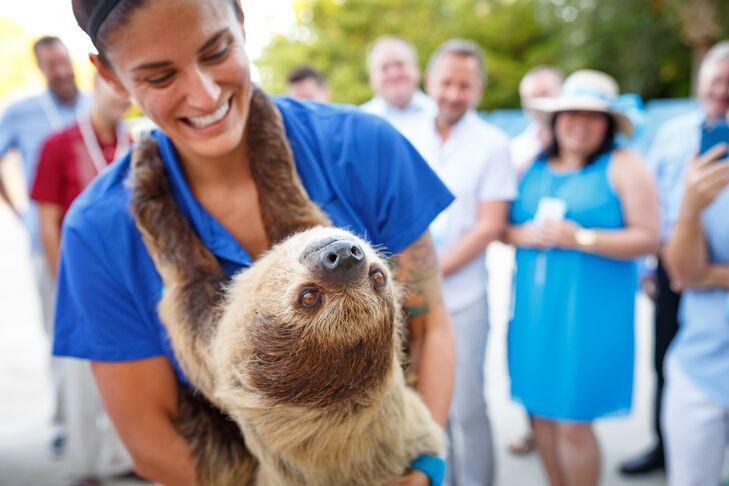 Reception Animal Interaction
