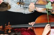 New York City, NY Classical Duo | Blue Rose Strings