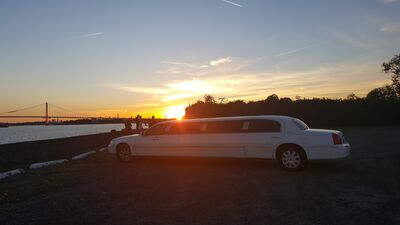 Golden Knight Limousine II
