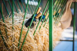 Wine in Green Wire Case and Hay