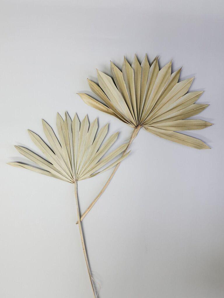Backyard wedding ideas dried palm leafs