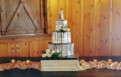Magnificent Wedding Cake Bakeries In New Braunfels Tx The Knot Funny Birthday Cards Online Elaedamsfinfo