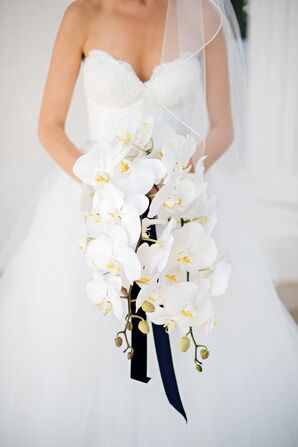 Modern Cascading Orchid Bouquet with Black Ribbon