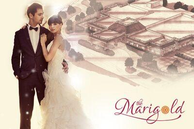 The Marigold