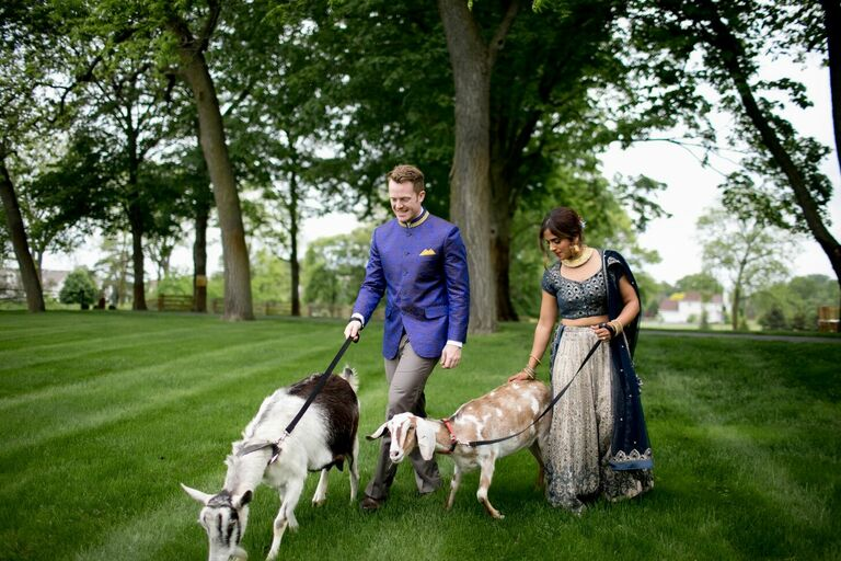 Couple walking with goats