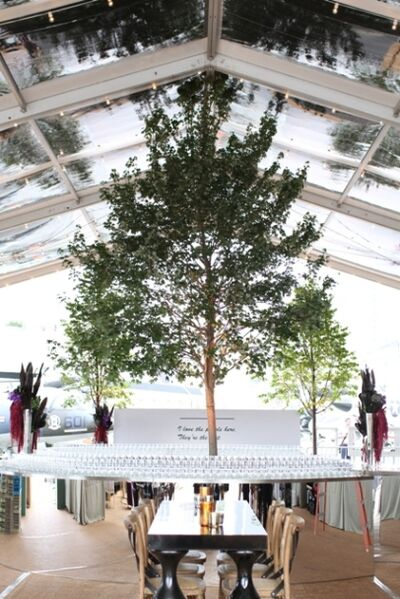 Interior Foliage Design Inc.