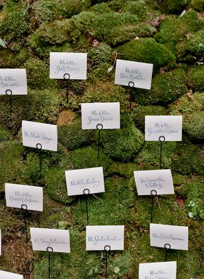 Moss Escort Card Display Wall