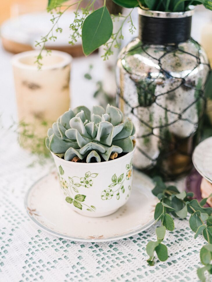 Succulent Centerpiece in Vintage Teacup