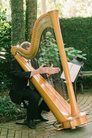 Harpist for Wedding at The Lace House in Columbia, South Carolina