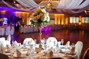 Wedding reception venues in new haven ct the knot amber room colonnade junglespirit Image collections