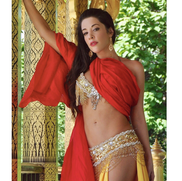 Los Angeles, CA Belly Dancer | Belly Dancer Los Angeles-SAMARA