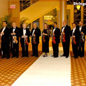North Miami Beach, FL Violinist | Strings-USA