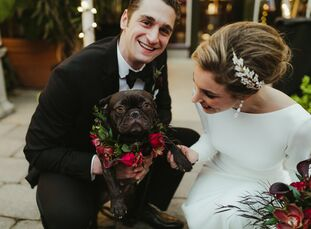 When determining the guest list for their December nuptials, veterinarians Bianca Buffa (29) and Nicholas Vito (29) knew one specific attendee would c