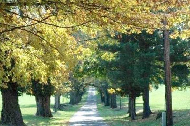 Belmont Manor And Historic Park Reception Venues