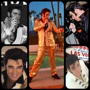 "Las Vegas, NV Elvis Impersonator | *Steve""ELVIS""Gold*    50's/60's/70's Tribute"