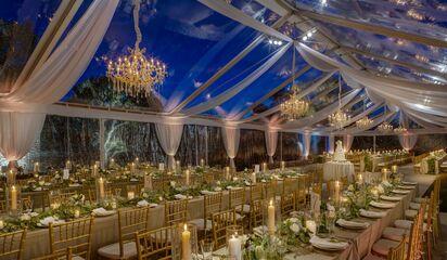 Intelligent Lighting Design Austin Wedding