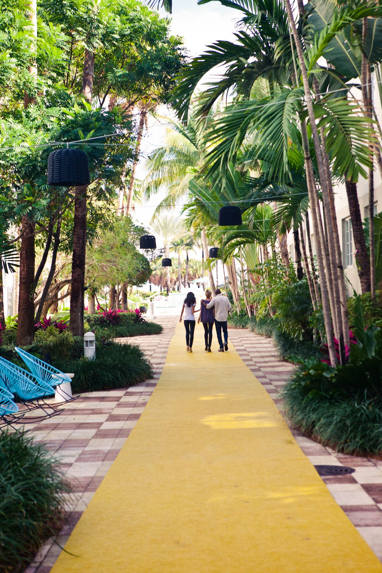 The Surfcomber Miami, South Beach - a Kimpton Hotel - Unveil