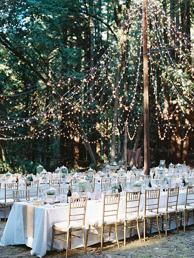 Canopy of string lights above outdoor wedding reception