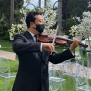 Los Angeles, CA Violin | William Yun Violin - Jopa String Quartet