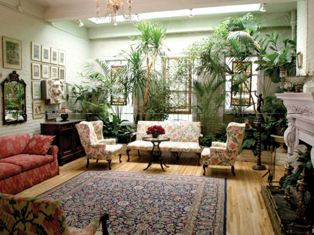 greenery inside the living room of Alger House
