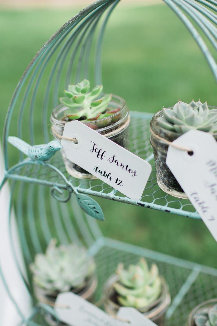 Miniature Succulent Escort Cards