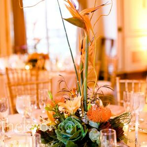 Exotic Modern Centerpieces