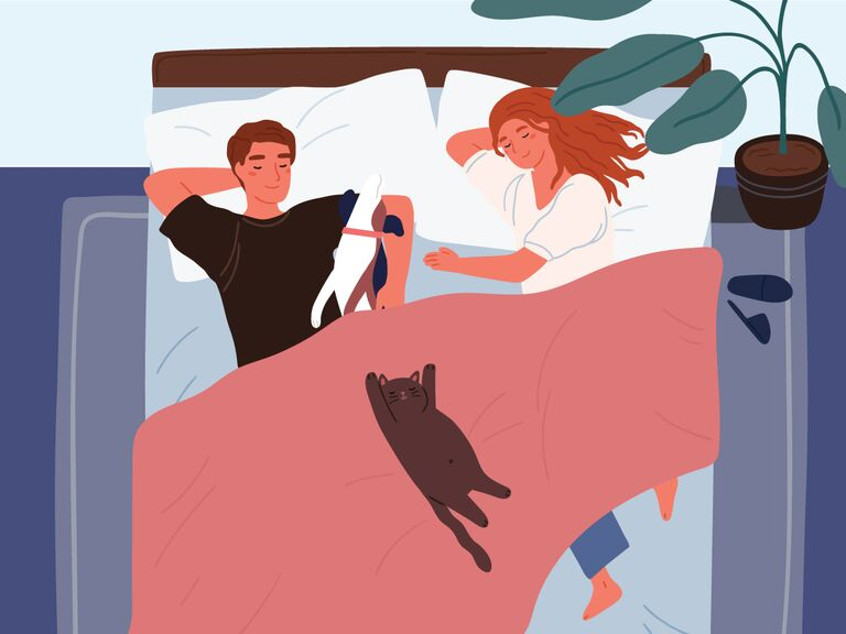 illustration of couple and pets in bed