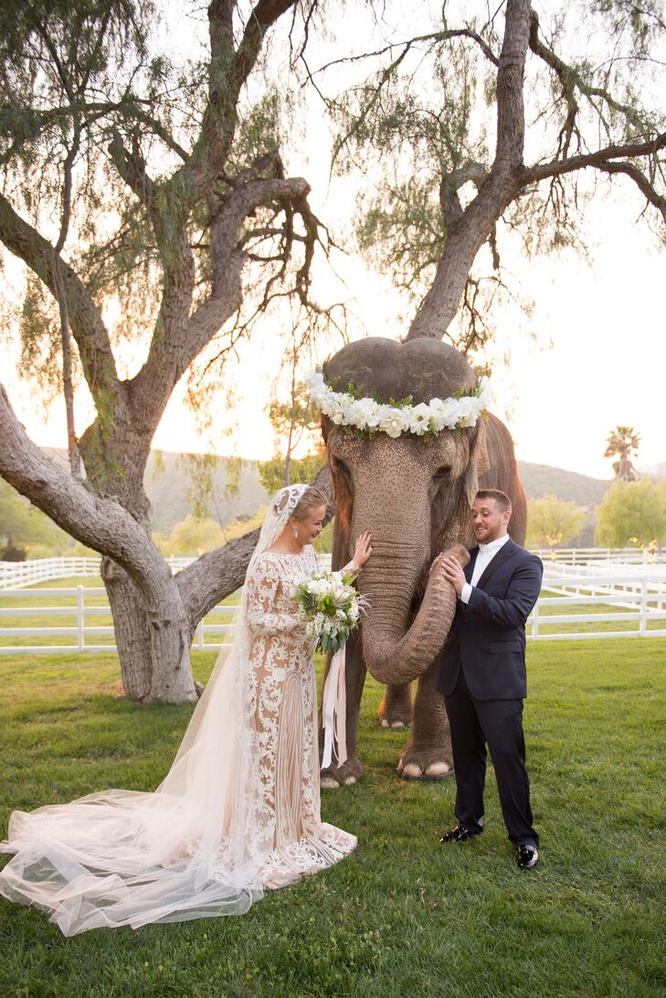 Symbolic of one of their many travel destinations, Olga and Dakota posed with a beautiful elephant on their wedding day.
