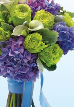 Showcase Of Flowers