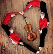 Martinez, CA Classical Quartet | Musical Heart Strings