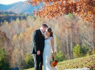 The Bride Elyse Williamson, 24, an accounts payable specialist at Pegasus Residential The Groom Kyle Carpenter, 26, a sales engineer at Hoover Precisi