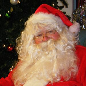 Richmond, VA Santa Claus | 40 yr experience, X police,Security officer