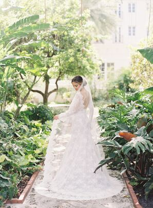 Classic Bride in Lace Wedding Dress and Veil