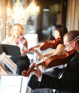 Los Angeles, CA String Quartet | Organic String Quartet