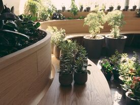 Kimoto Rooftop Garden Lounge - Oak Alcove - Bar - Brooklyn, NY