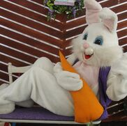 San Francisco, CA Easter Bunny | Easter BUNNY Visits