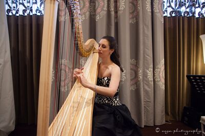 Emily Klein, Houston Harpist