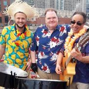 Chicago, IL Steel Drum Band | PANDEMONIUM! Steel Band