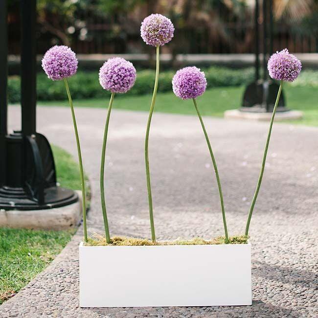 Purple Floral Ceremony Decor