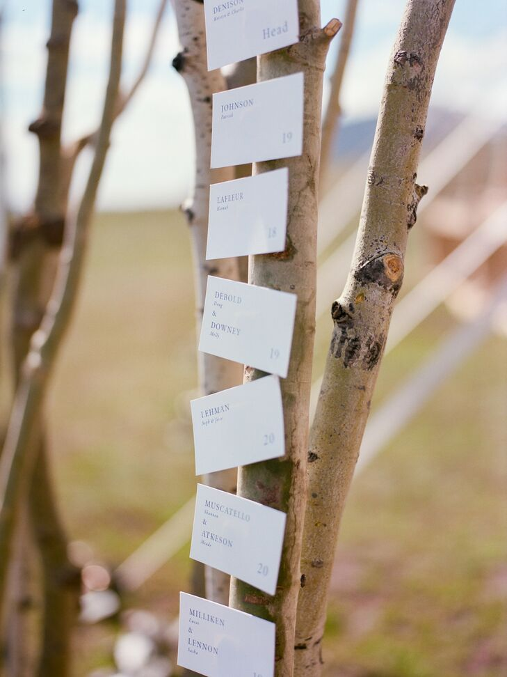 Simple Paper Escort Cards Hanging on Tree