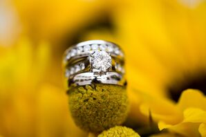 Round Cut Diamond Ring with Encrusted Band