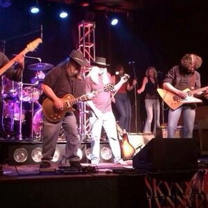 Vacaville, CA Lynyrd Skynyrd Tribute Band | Skynnyn Lynnyrd Band OR Just Larry/Acoustic Guitar