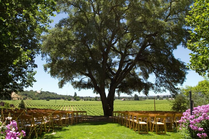 Jen and Dario exchanged vows beneath a majestic Cork Oak tree  overlooking an expanse of estate vineyards.